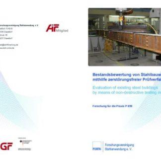 Fostabericht P 859 - Bestandsbewertung von Stahlbauwerken mithilfe zerstörungsfreier Prüfverfahren