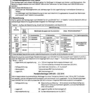 Stahl-Eisen-Betriebsblatt (SEB) 601 303 - Wälzlager - Bezeichnung, Ausführung, Auswahl