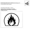 Fostabericht P 145.3 - Erfassung, Analyse und Bewertung der derzeitigen Rettungskonzepte bei Brandfällen in Verkehrstunneln für Straße und Schiene